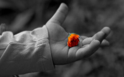 baby hand with flower